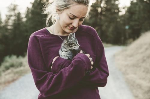 Salah satu kebiasan yang sering dilakukan kucing adalah menjilat-jilat. (Ilustrasi/Pexels)