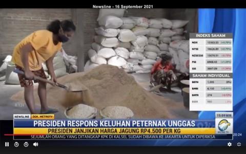 Jokowi Respons Keluhan Peternak Unggas
