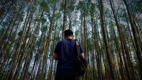 Pembukaan 2 Destinasi Wisata di Yogyakarta Terkendala Jaringan Internet