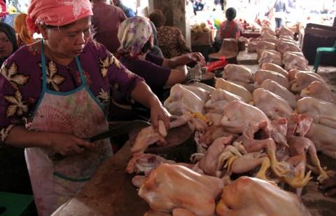 BI: Kenaikan Harga Daging Ayam Picu Inflasi September