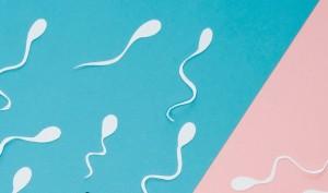 Mencampur Sperma ke Makanan, Apakah Berbahaya?