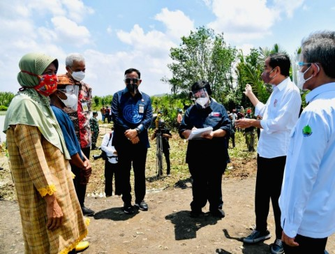 Menteri LHK: Pemulihan Mangrove Kunci Mitigasi Perubahan Iklim