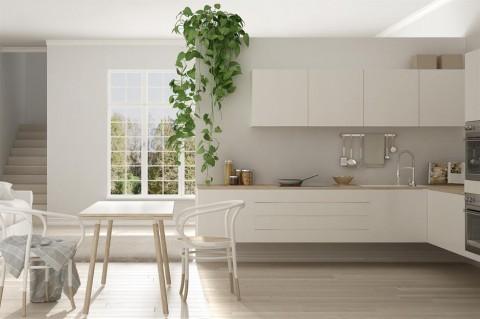 6 Tips Memilih Warna Cat yang Tepat untuk Dapur