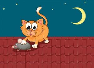 Mengapa Kucing Sering Memburu Tikus?