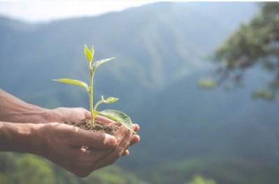 5 Upaya Melestarikan Lingkungan, Perusahaan Cat Ini Raih Global CSR Award