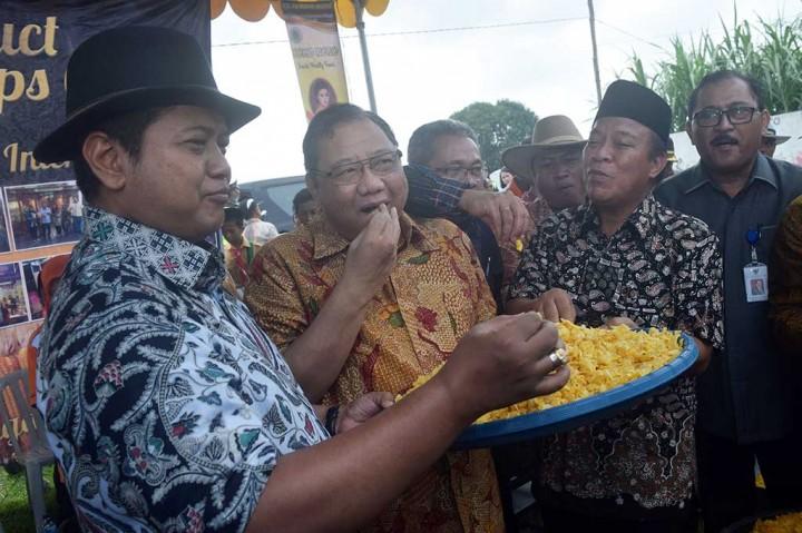 Menteri Koperasi Panen Raya Jagung di Lamongan
