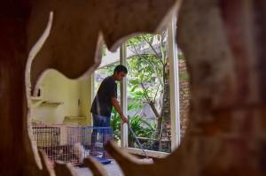 Operasional VR 100 persen bergantung dari donasi masyarakat, khususnya untuk makanan dan klinik dokter hewan. Tapi biaya operasional untuk gaji pegawai yang mengurus kucing, untuk beli sabun, bayar tagihan listrik dan lain-lain ditanggung Violetta sendiri.