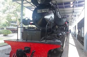 Selain koleksi-koleksi unik tadi, masih dapat disaksikan berbagai macam jenis lokomotif uap dari seri B, C, D hingga jenis CC yang paling besar CC 5029, Schweizerische Lokomotiv und.