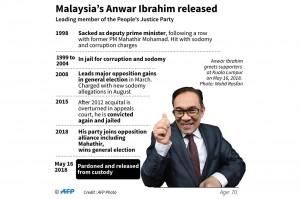 Politisi berusia 70 tahun itu sebenarnya divonis hukuman penjara lima tahun karena dianggap terbukti melakukan sodomi. AFP/MOHD RASFAN