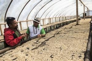 Menurutnya, kopi Puntang merupakan produk asli Indonesia yang paling dicari para penikmat kopi dunia karena menjadi kopi terbaik dalam ajang SCAA (Specialty Coffee Association of America) dengan nilai 8,62.