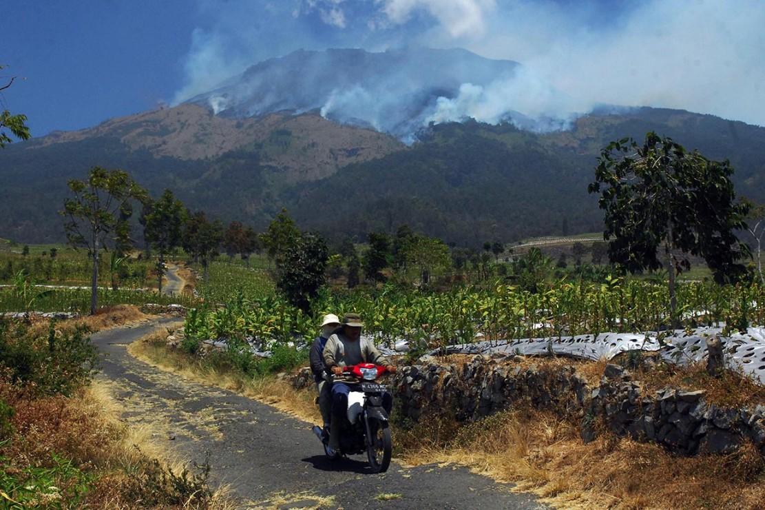 Hutan di Gunung Sumbing Terbakar, Jalur Pendakian Ditutup