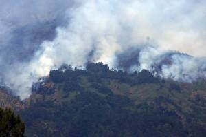 Seiring kebakaran gunung di perbatasan Kabupaten Temanggung dengan Kabupaten Magelang tersebut seluruh jalur pendakian ke Gunung Sumbing mulai Senin pukul 18.30 WIB ditutup.