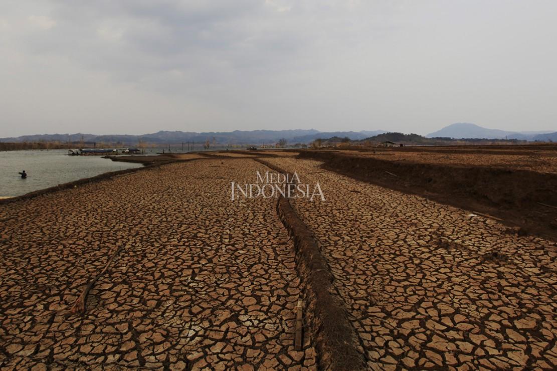 Areal persawahan yang kembali muncul setelah tenggelam di wilayah yang dulunya merupakan Desa Cipaku, Kecamatan Darmaraja, Kabupaten Sumedang, Jawa Barat.