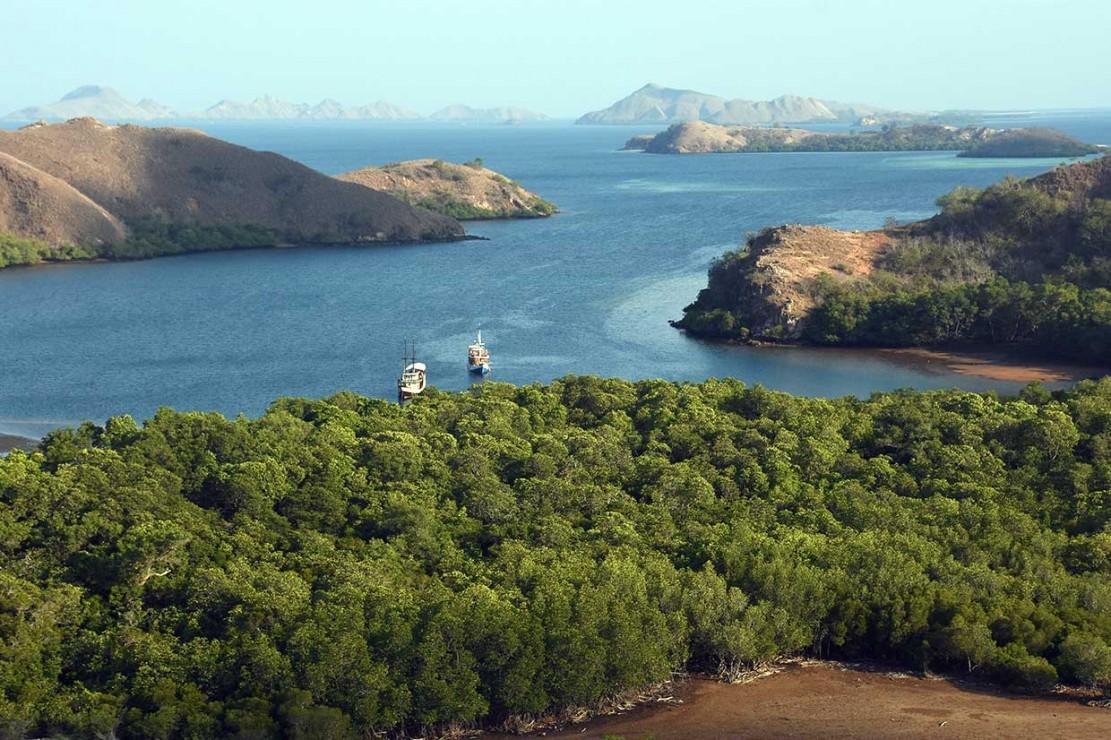 Pulau Rinca selain terkenal dengan komodonya yang termasuk dalam 7 keajaiban dunia, juga memiliki pemandangan dengan bentang alam yang indah memikat wisatawan.