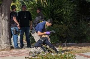 Pelaku penembakan tewas pascakejadian. Ia ditembak beberapa kali oleh aparat dan kemudian dinyatakan meninggal di rumah sakit setempat. Pelaku penembakan diidentifikasi sebagai Ian David Long, 28. Motif penembakan masih diselidiki.