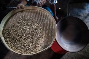 Selain kopi yang dipanen dari memetik, warga juga memanen kopi luwak yang dihasilkan secara alami atau liar. Kopi luwak dijual dengan harga 500 ribu per kilonya dan kopi lanang 200 ribu per kilo.