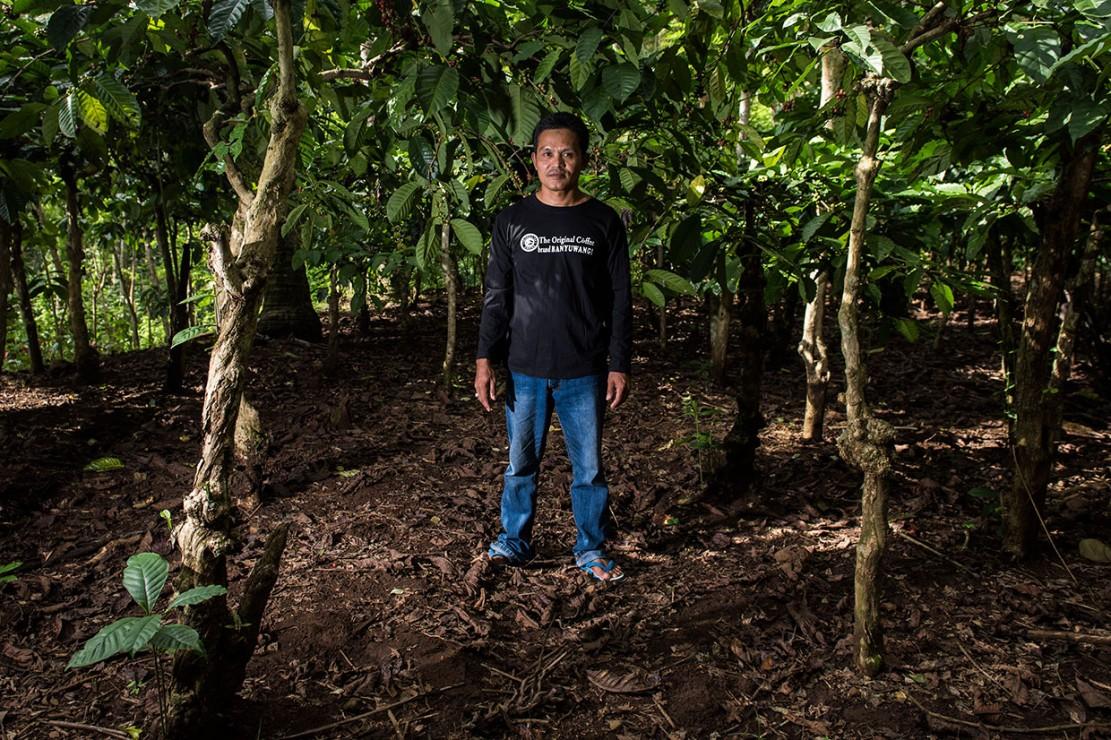 Menurut petani yang juga pemilik merek kopi Kahyangan, Sahnawi, perkebunan tersebut dikelola secara turun-temurun dan telah berumur 40-50 tahun. Bahkan semua pekarangan rumah-rumah ditumbuhi pohon kopi yang rindang dengan tinggi sekitar satu hingga dua meter.