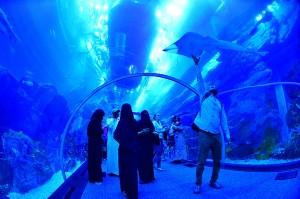 Wisatawan mengunjungi akuarium Dubai Mall di pusat kota Dubai, Uni Emirat Arab.