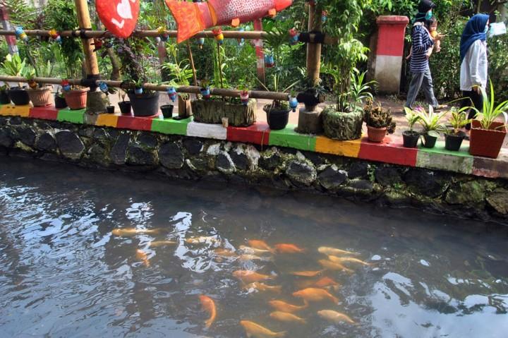 Warga Kampung Lauk Manfaatkan Selokan untuk Budidaya Ikan