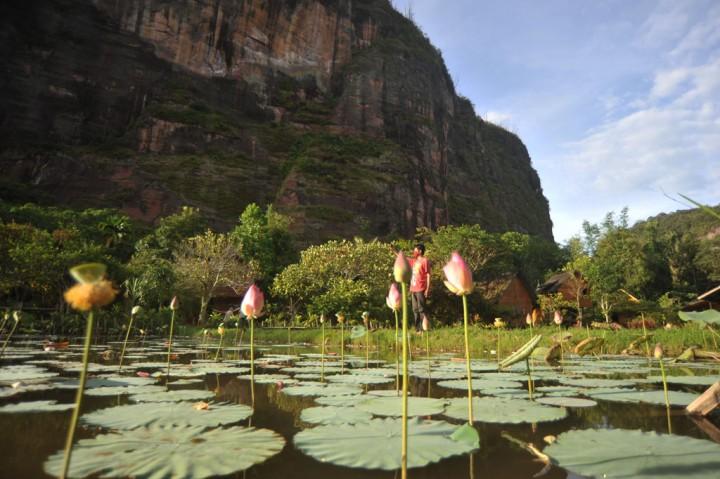 Potensi Wisata Pedesaan Lembah Harau