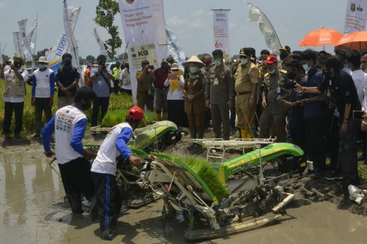 Mentan Panen Raya di Lampung