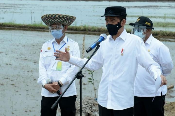 Jokowi: 30 Ribu Hektare Lumbung Pangan Disiapkan di Kalteng