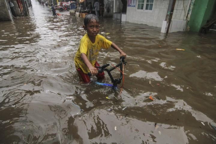 Populer Foto, Jokowi Diabadikan Jadi Nama Jalan di UEA hingga PT