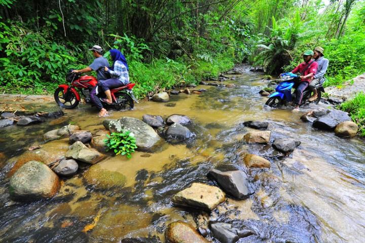 Parah! Akses Jalan Desa Terpencil di Jambi