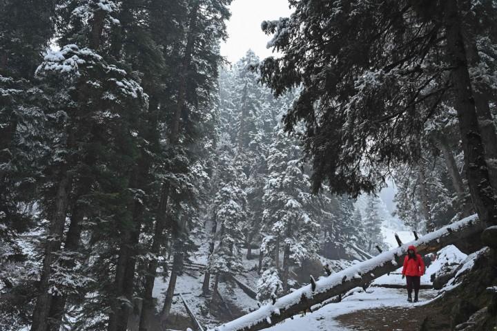 Potret Kashmir Saat Turun Salju