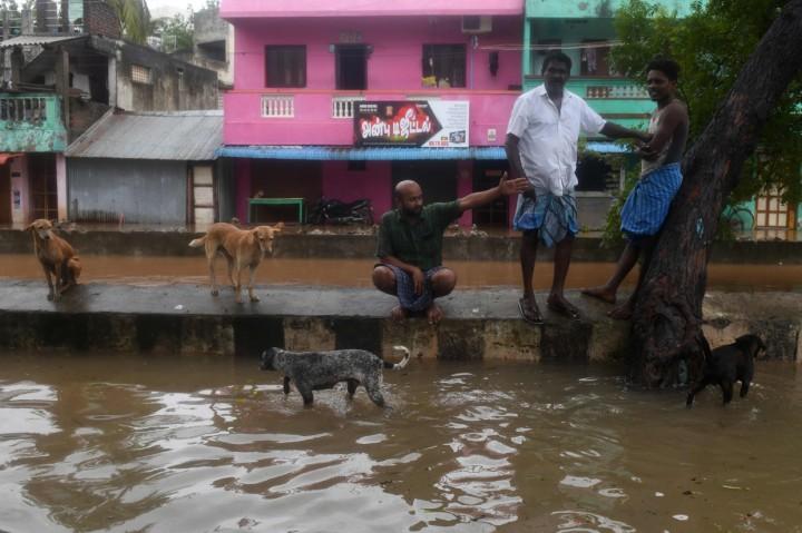 India Dihantam Topan Nivar