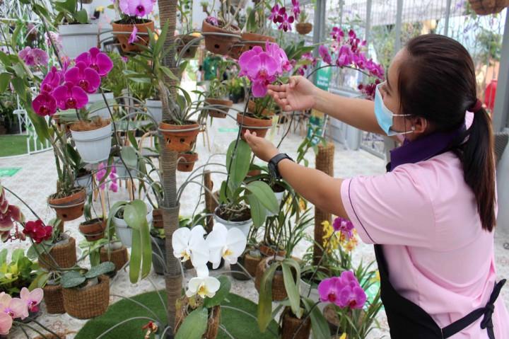 Batu Love Garden Hadirkan Wisata Bunga Langka