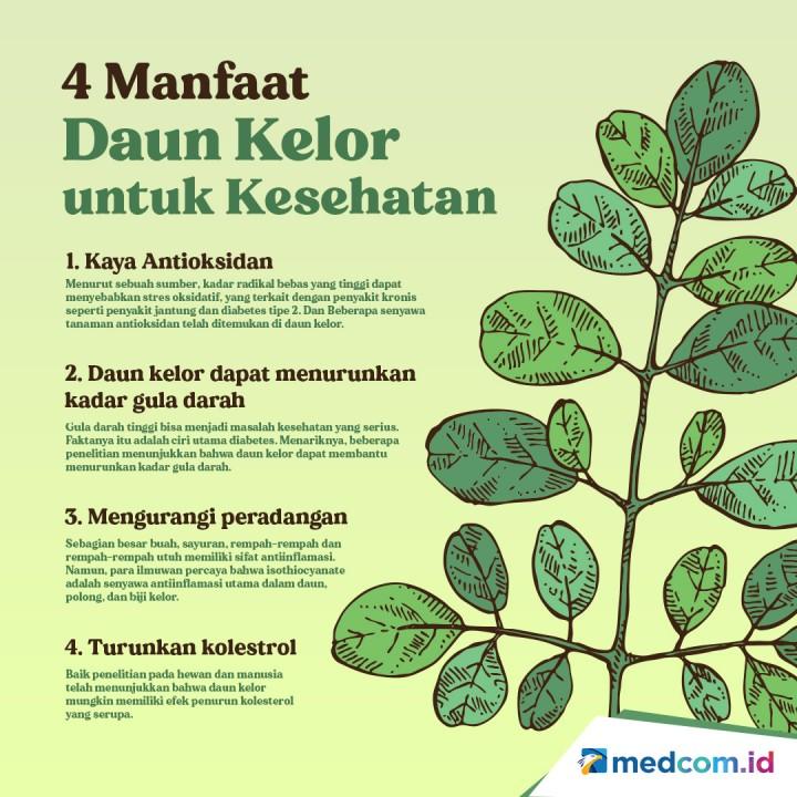 4 Manfaat Daun Kelor untuk Kesehatan