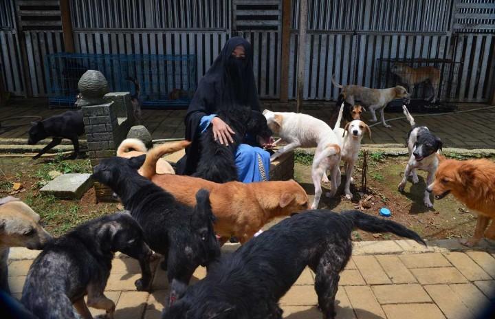 Potret Hesti Sutrisno, Wanita Bercadar Pemilik 70 Anjing Liar
