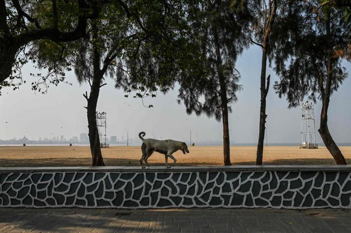 Potret Jalanan Mumbai yang Sepi Selama Pembatasan Ketat