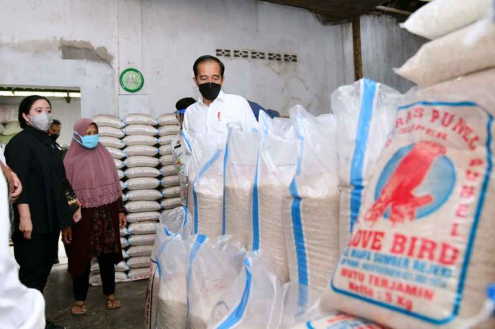 Potret Jokowi Tinjau Proses Tanam hingga Penggilingan Padi di