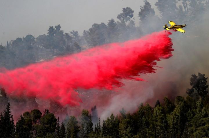 Potret Kebakaran Hutan Hebat Landa Yerusalem