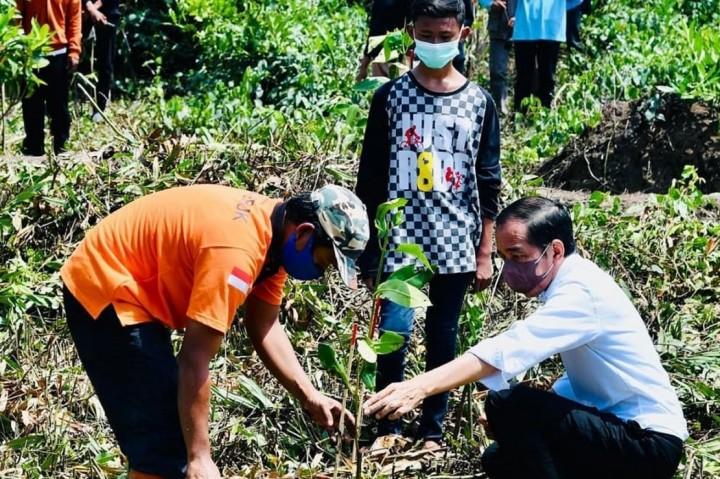 3 Foto Terpopuler: Letusan Gunung Cumbre Vieja hingga Jokowi