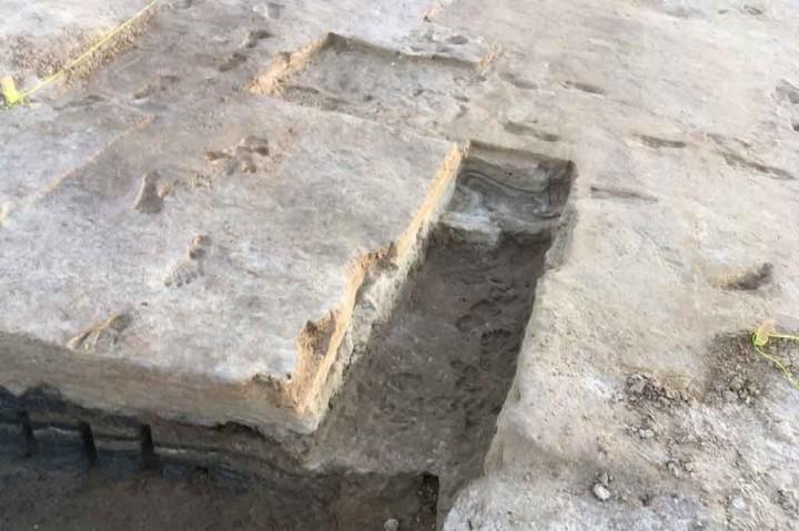 Jejak Kaki Berumur 23 Ribu Tahun Ditemukan di New Mexico