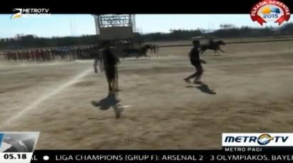 Pacuan Kuda di Waingapu-NTT Berlangsung Ricuh