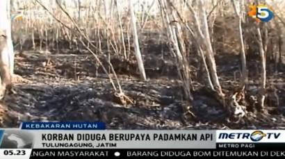 Warga Tulungagung Tewas di Tengah Hutan Tanaman Jati dan Akasia