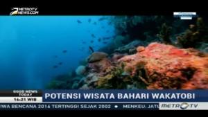 Mengunjungi Surga Wisata Selam Indonesia