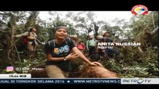 Kawasan Hitam di Jantung Kalimantan Part II (2)