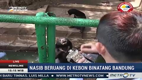 Kebersihan Jadi Keluhan Pengunjung Kebun Binatang Bandung
