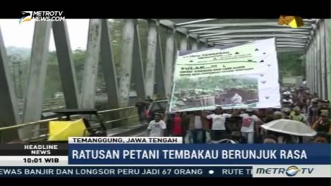 Ratusan Petani di Temanggung Demo Tolak Tembakau Impor