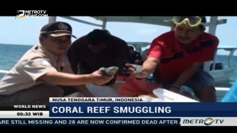 West Sumbawa Police Thwart Coral Reef Smuggling Attempts