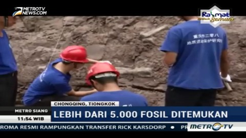 Ribuan Fosil Dinosaurus Ditemukan di Tiongkok