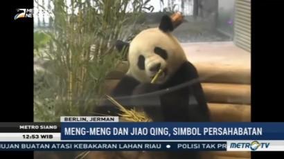 Jinping-Merkel Resmikan Panda Garden di Berlin Zoo