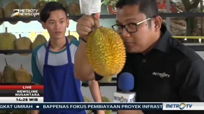Menikmati Durian Langsung di Markasnya