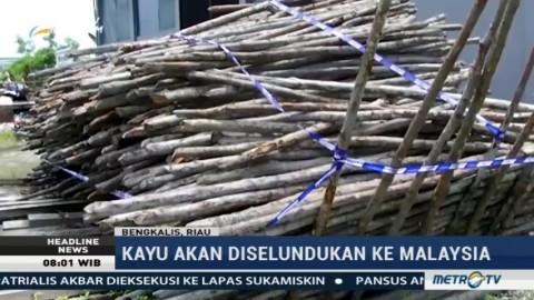 Bea Cukai Gagalkan Penyelundupan Kayu Bakau ke Malaysia