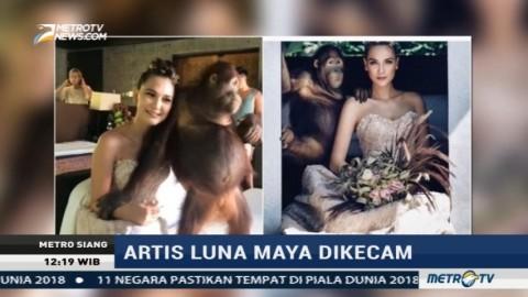Foto Bersama Orangutan, Luna Maya Dikecam